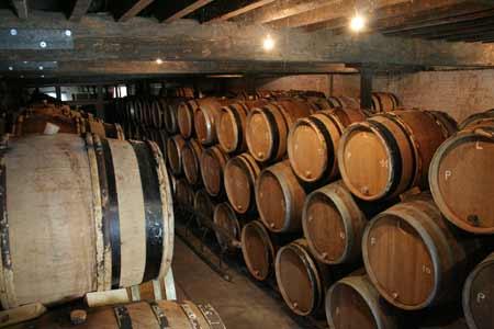 cantillon6.jpg
