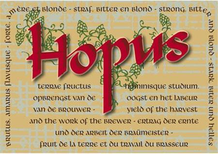 hopus1.jpg